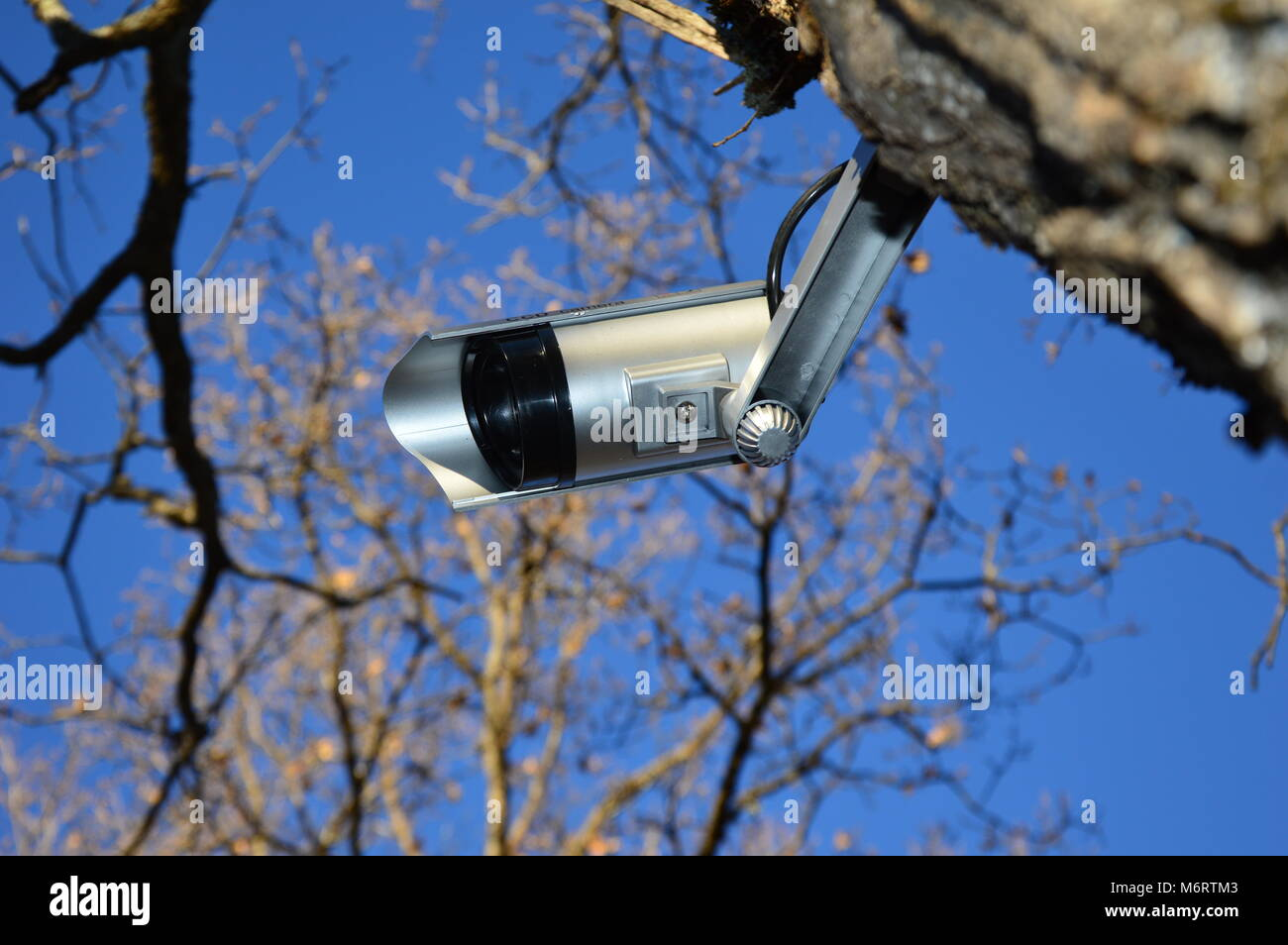 Zoom on a video surveillance camera with blue sky background - Stock Image