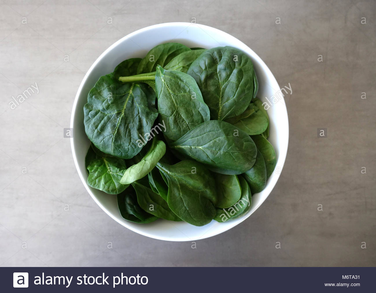 Bowl of Fresh Baby Spinach Leaves against a Gray Background Stock Photo