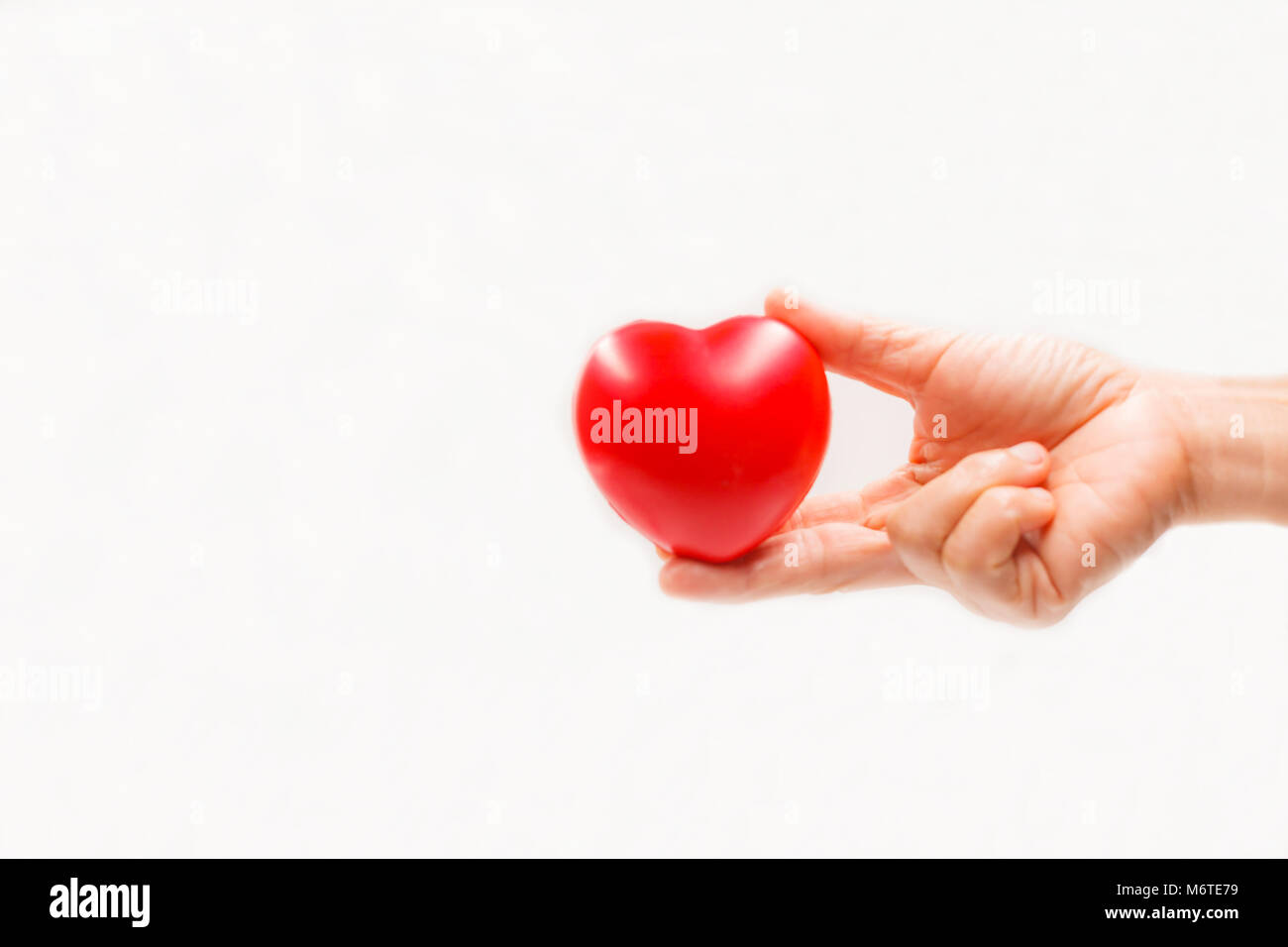 Heart shape in the helping hand on white background. Heart illness, disease protection, proactive checkup, mind - Stock Image