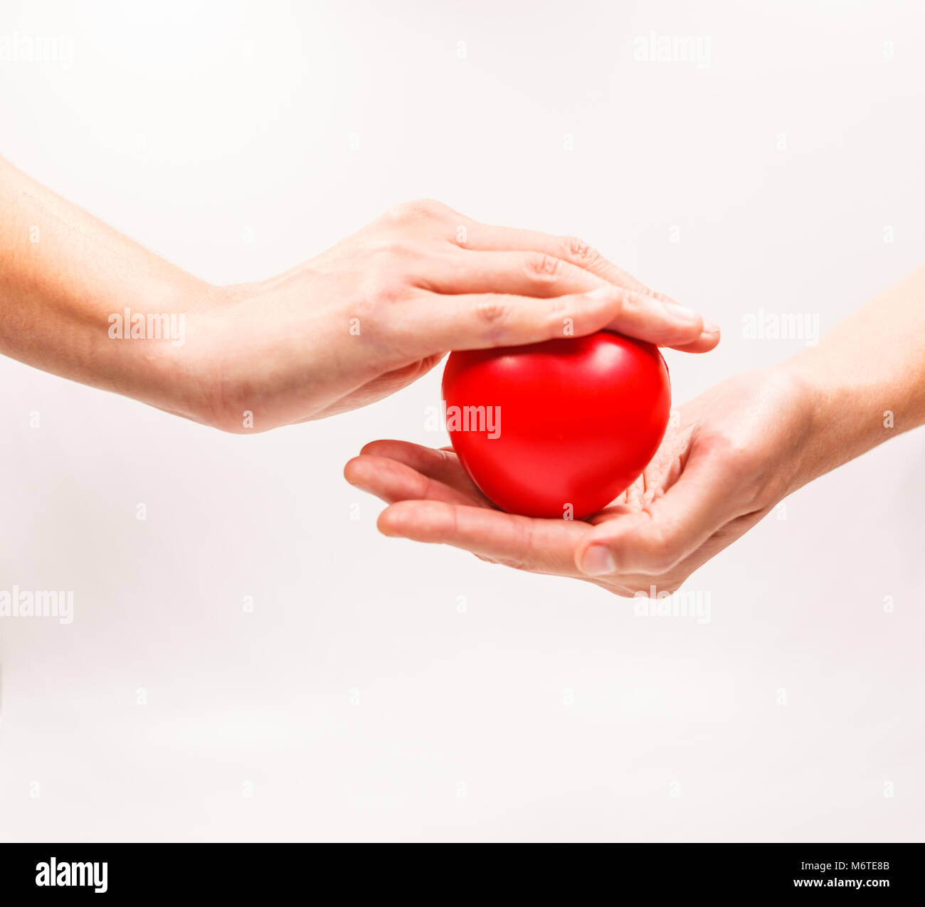 Heart shape in the helping hands on white background. Heart illness, disease protection, proactive checkup, mind - Stock Image