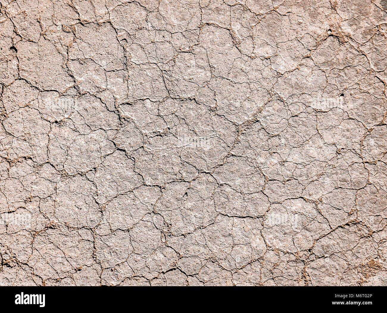 Dry cracked land. Arid environment. Water waste concept. Suitable for global warming concept. - Stock Image