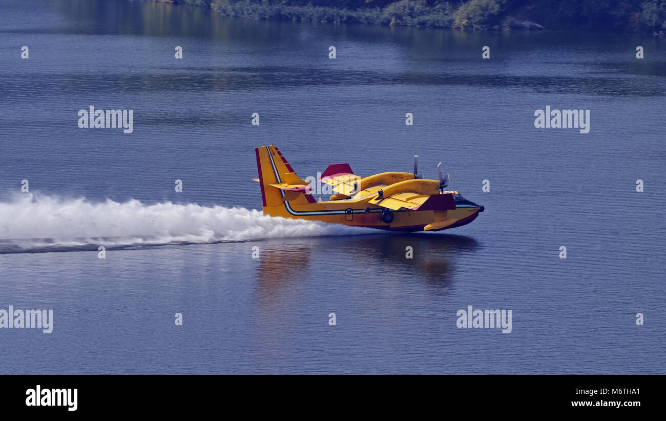 Canadair during the water loading maneuver - Stock Image