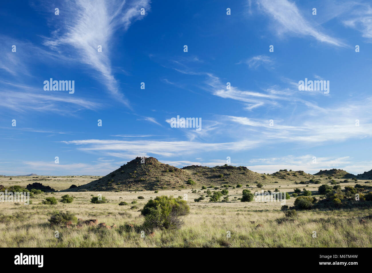 Koppies and grassy plains that are characteristic of the Karoo. - Stock Image