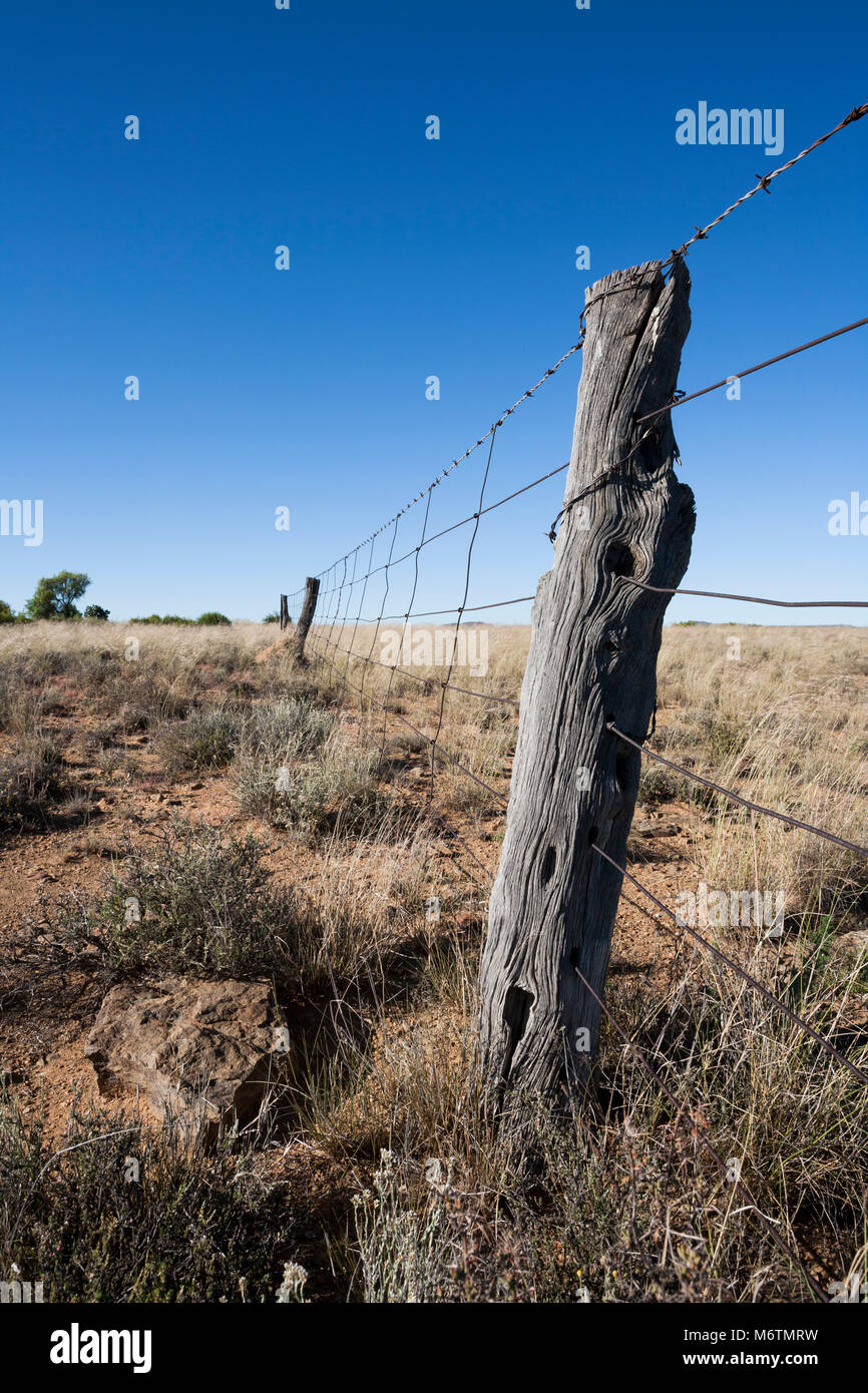 An old style hand woven farm fence on a sheep and cattle farm in the Colesberg district of the Karoo. - Stock Image