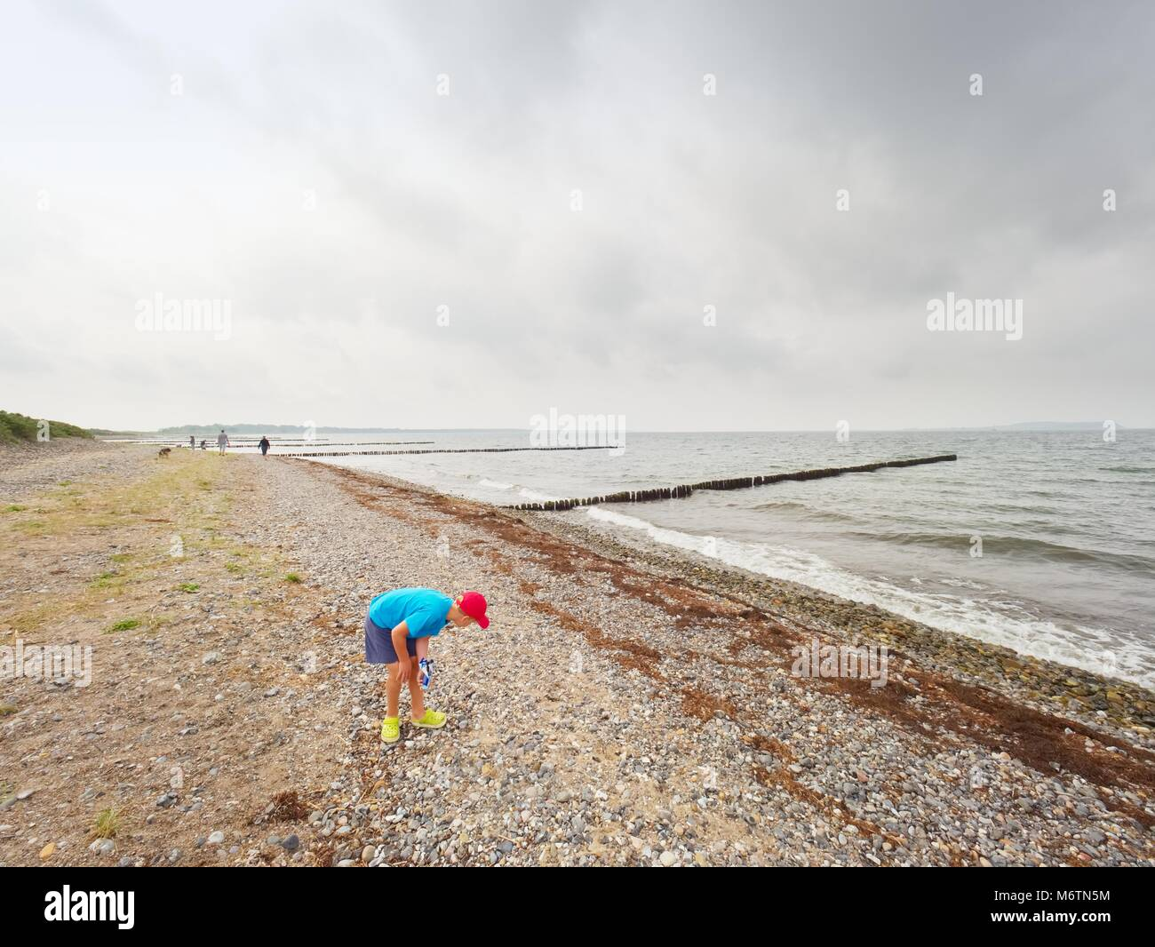 Blond boy on beach looking for shells.  Long stony beach with wooden breakwaters to protect a coast  from the force - Stock Image
