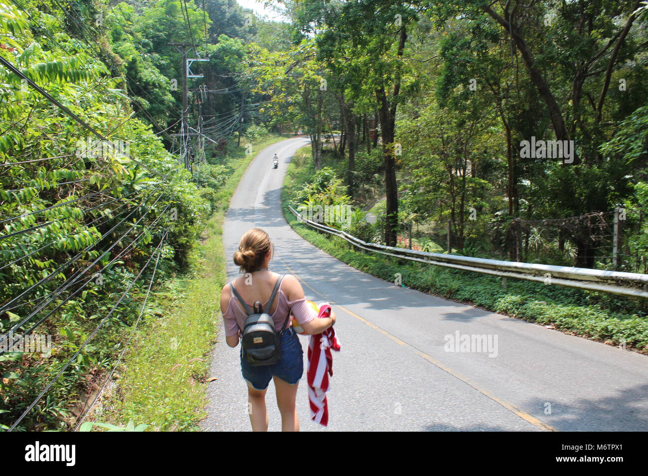 Hiking through the Jungles of Koh Chang - Stock Image