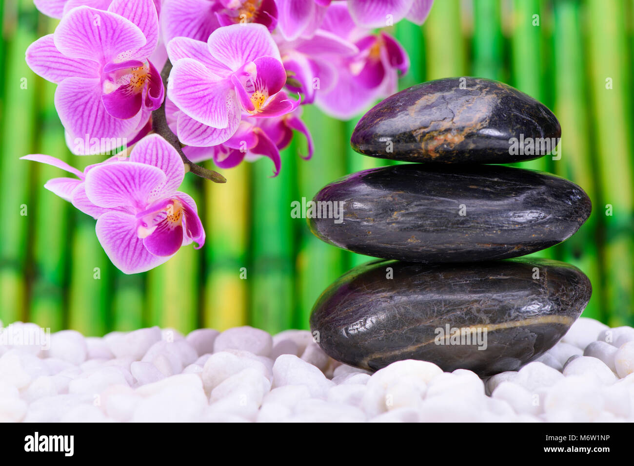 japanese zen garden with stacked stones and orchid flower - Stock Image