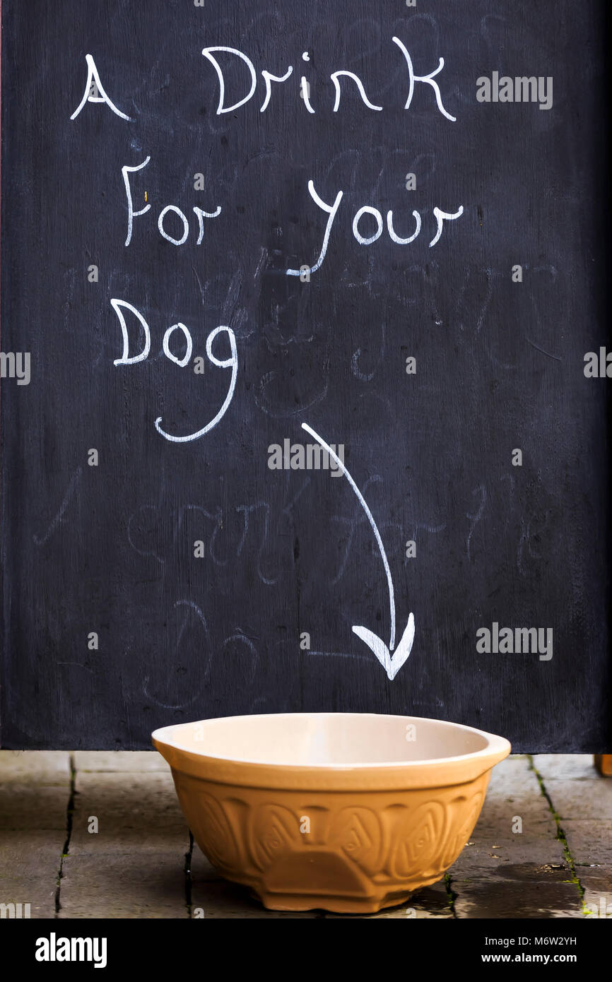 A drink for your Dog street sign - Stock Image