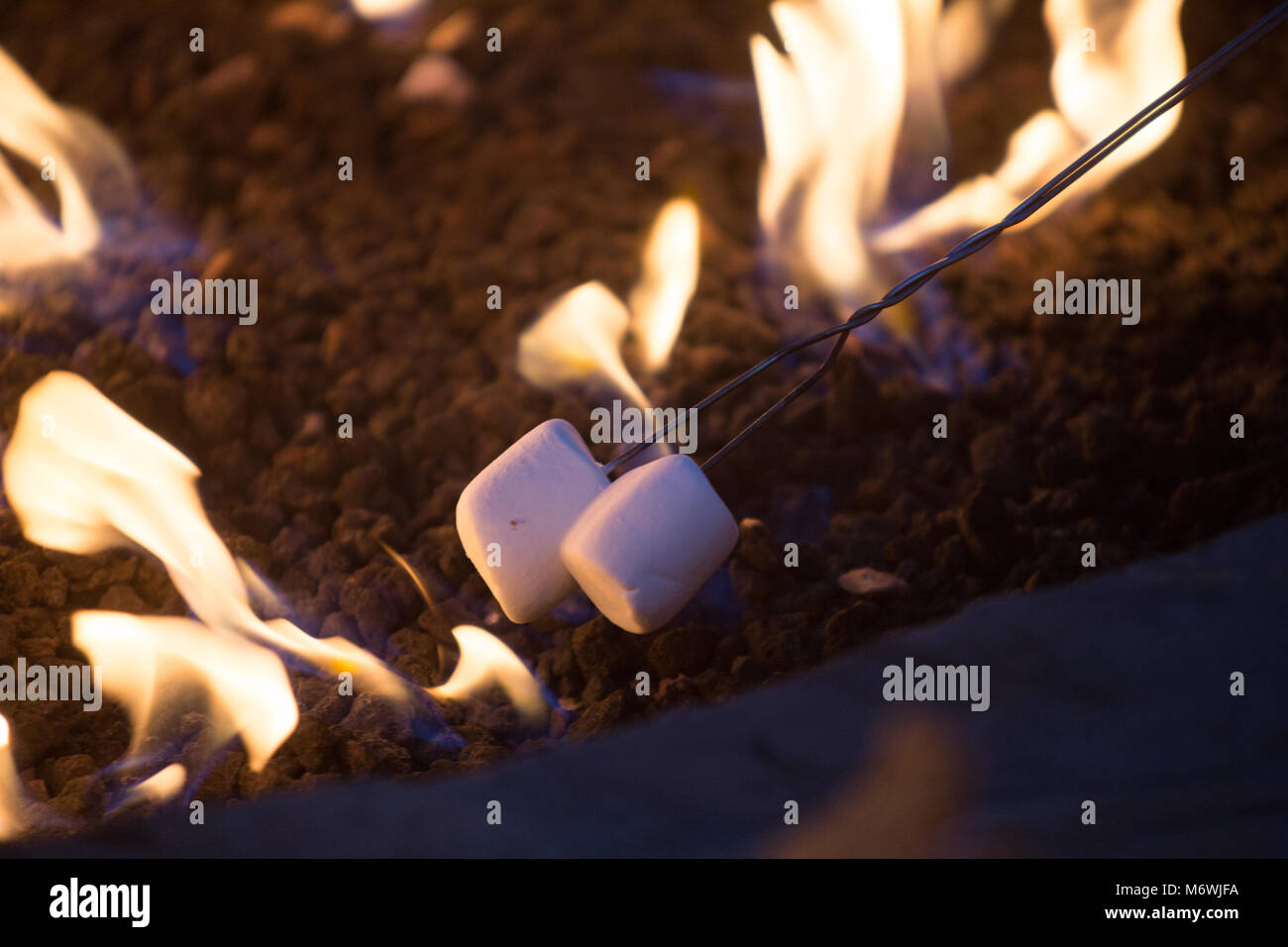 roasting marshmallows over a fire pit - Stock Image