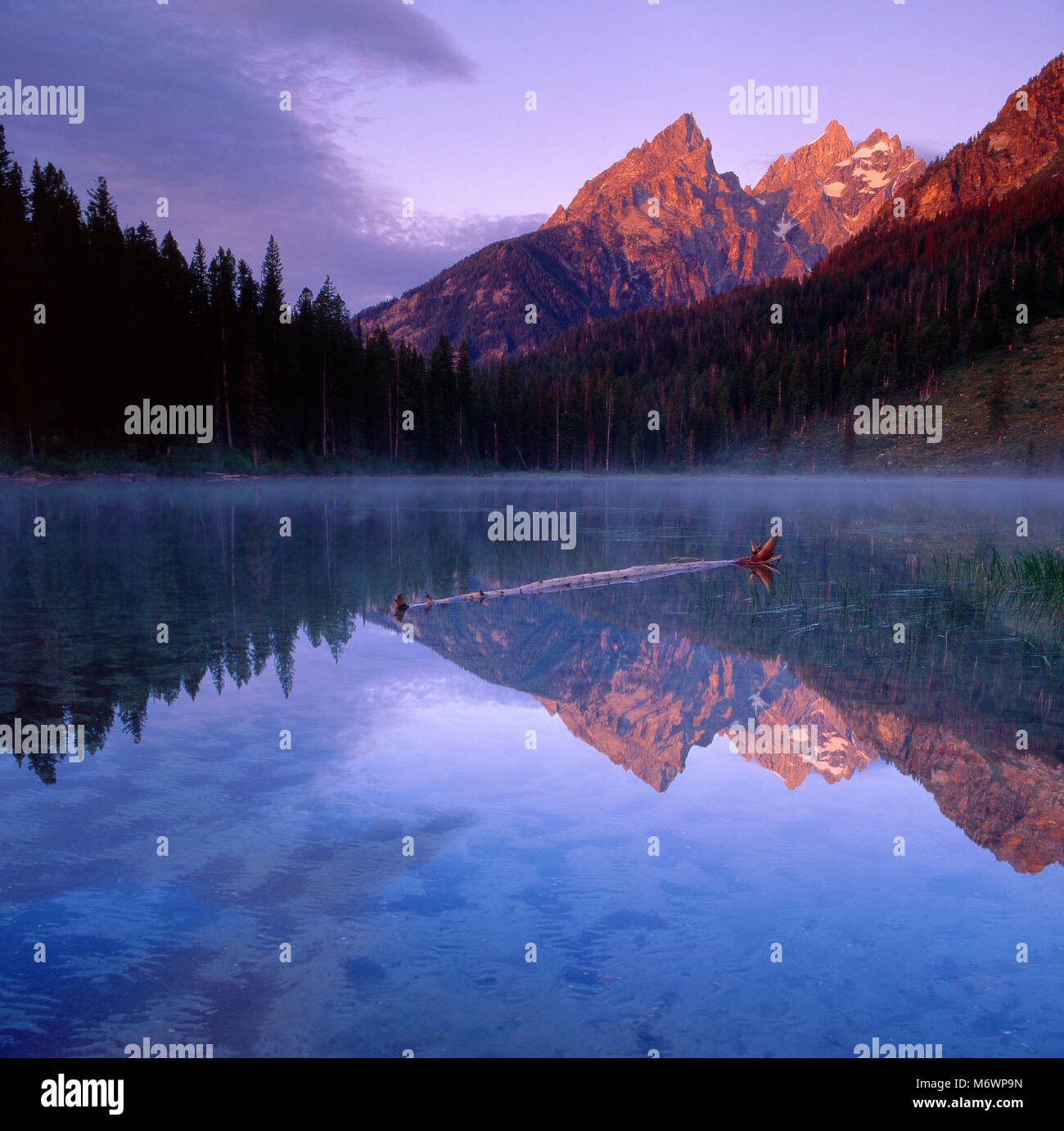 Sunrise, String Lake, The Cathedrals, Grand Teton National Park, Wyoming - Stock Image