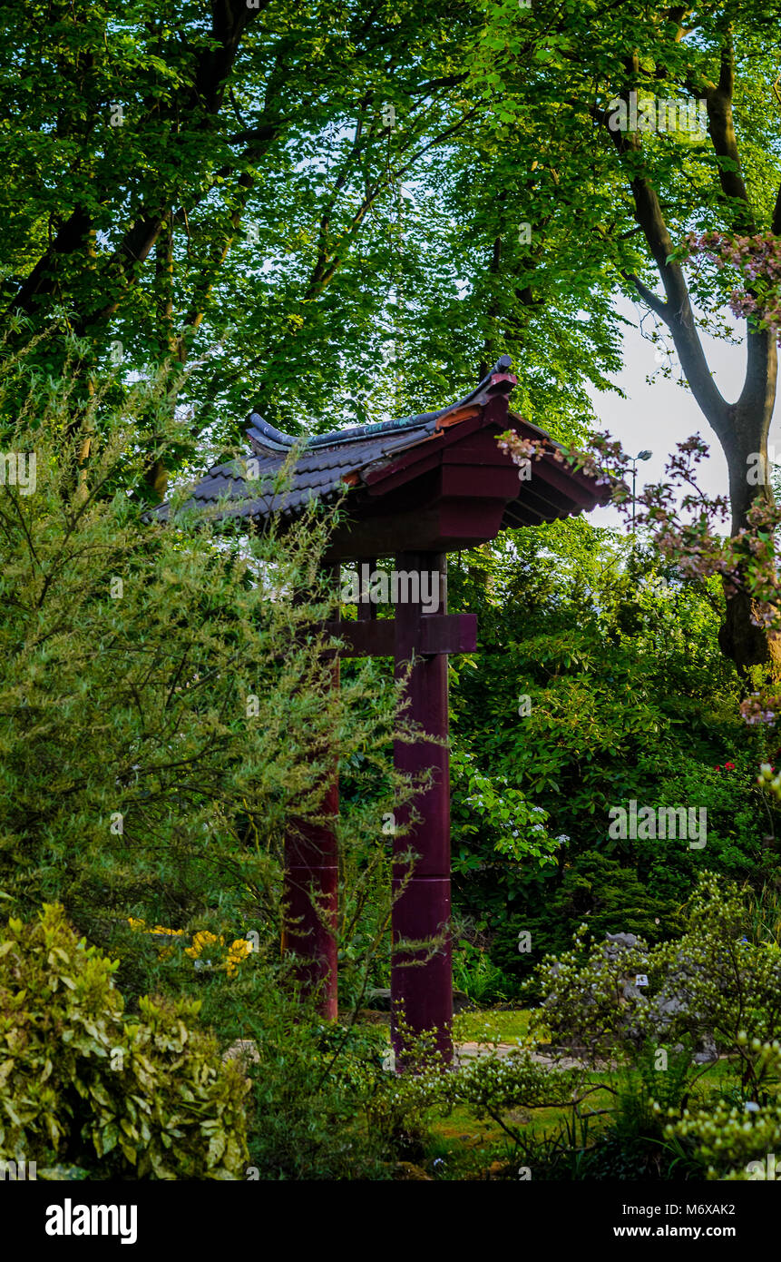 Japan Gate And Trees In Japanese Style Garden Stock Photo