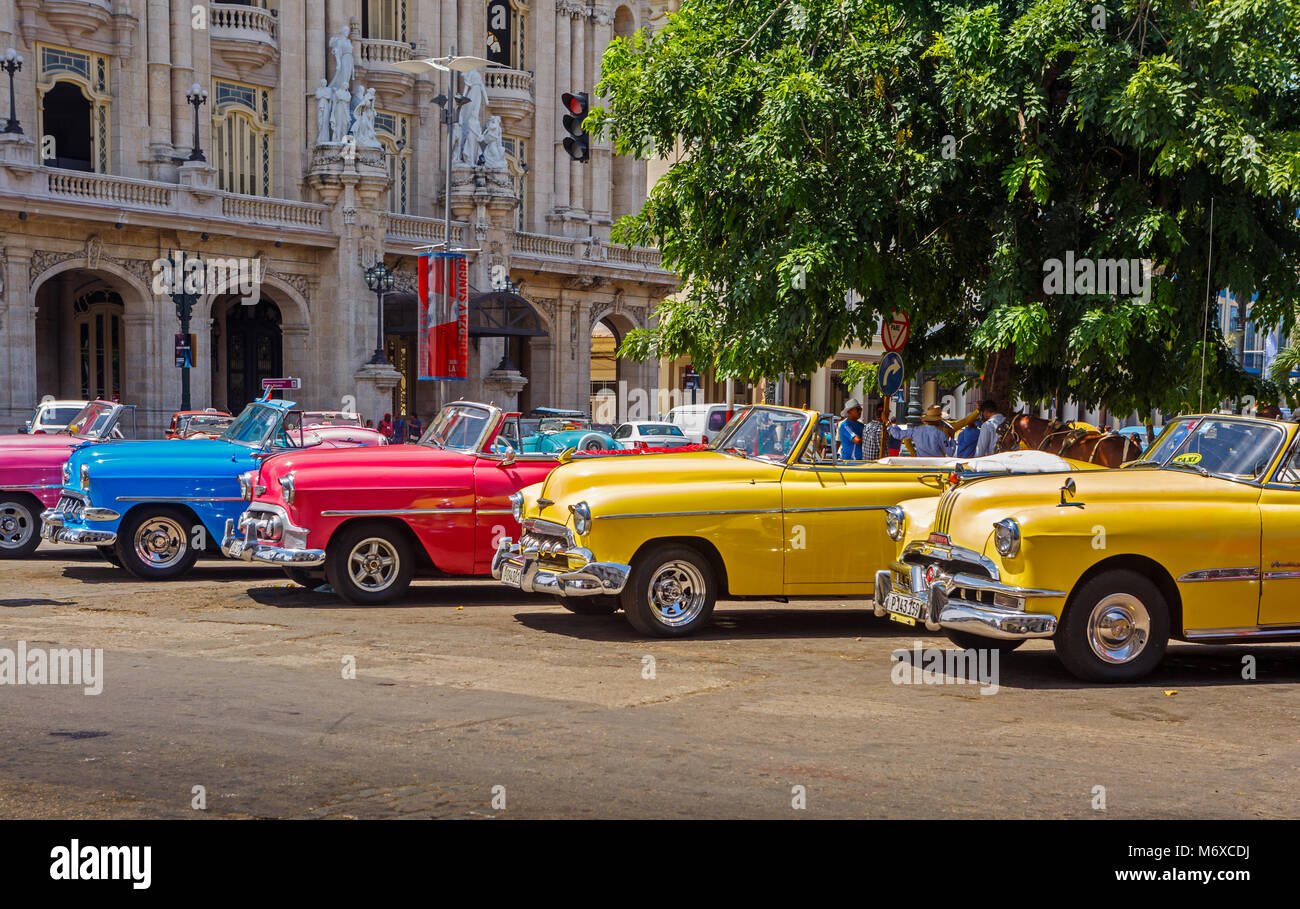 Brightly Colored Vintage Cars in Front of the Gran Teatro in Havana Cuba - Stock Image