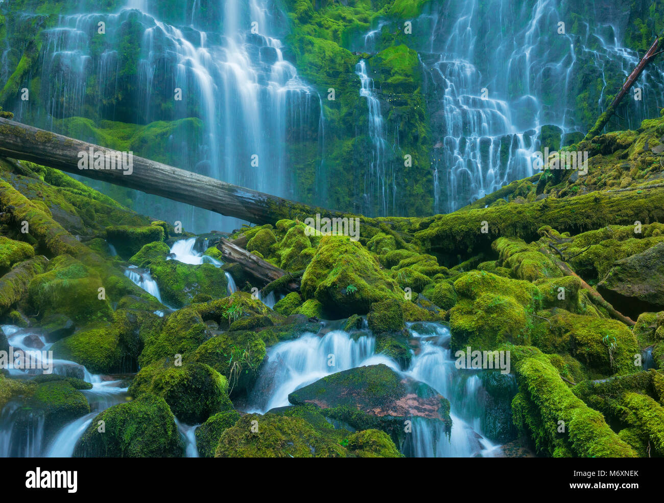 Proxy Falls, Three Sisters Wilderness, Willamette-Deschutes National Forest, Oregon - Stock Image