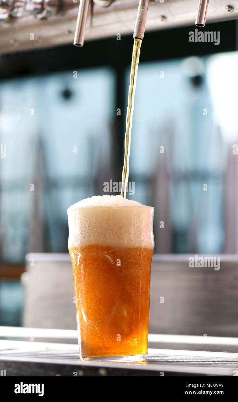 Drafting a glass of chilled draft beer from a tap in a pub in a low angle view of the liquid pouring into the glass - Stock Image