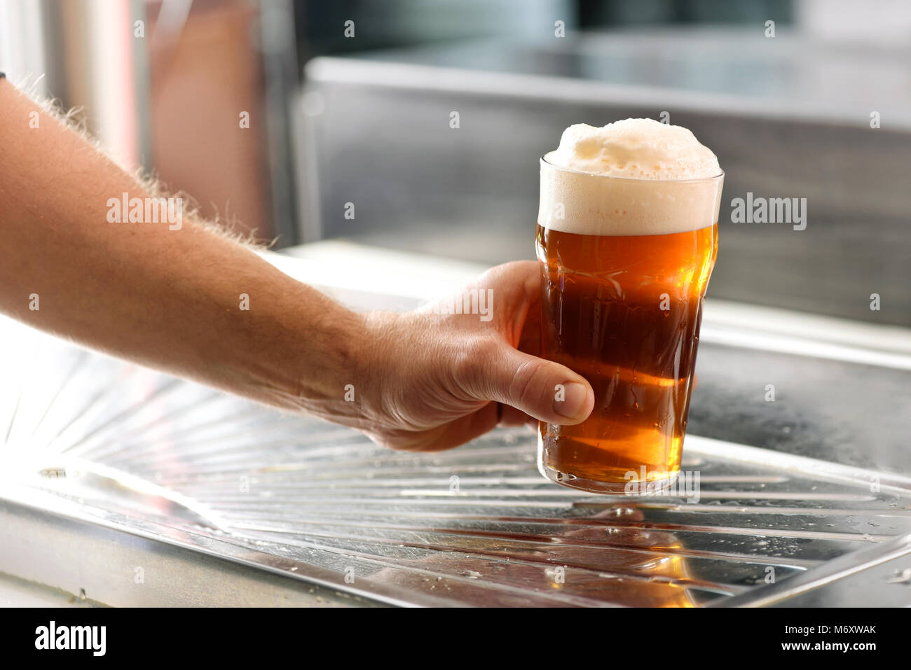 Man holding a fresh glass of chilled draft beer with a good frothy head over a stainless steel counter in a pub - Stock Image