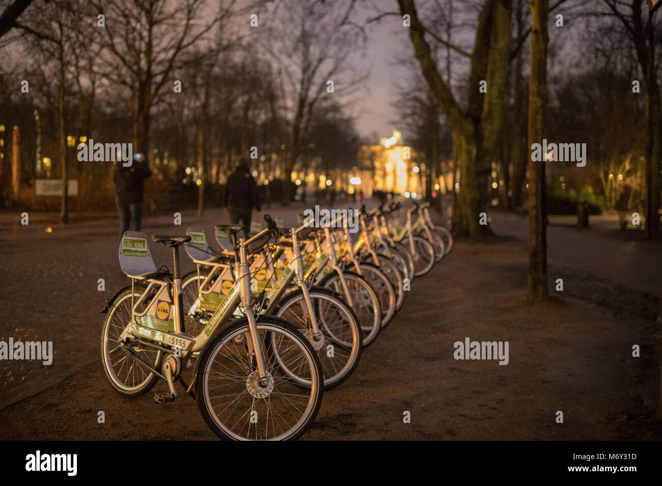 Bicycles in the Tiergarten at night, Berlin, Germany - Stock Image