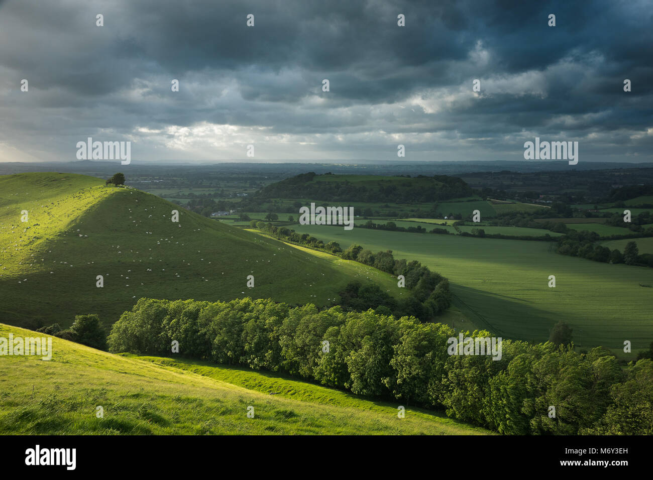 Corton Denham, South Somerset, England, UK - Stock Image