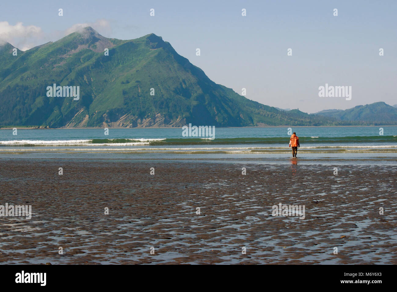 A shoreline view from Chinitna Bay   . A woman in an orange raincoat and waders looks out towards the emerald green - Stock Image