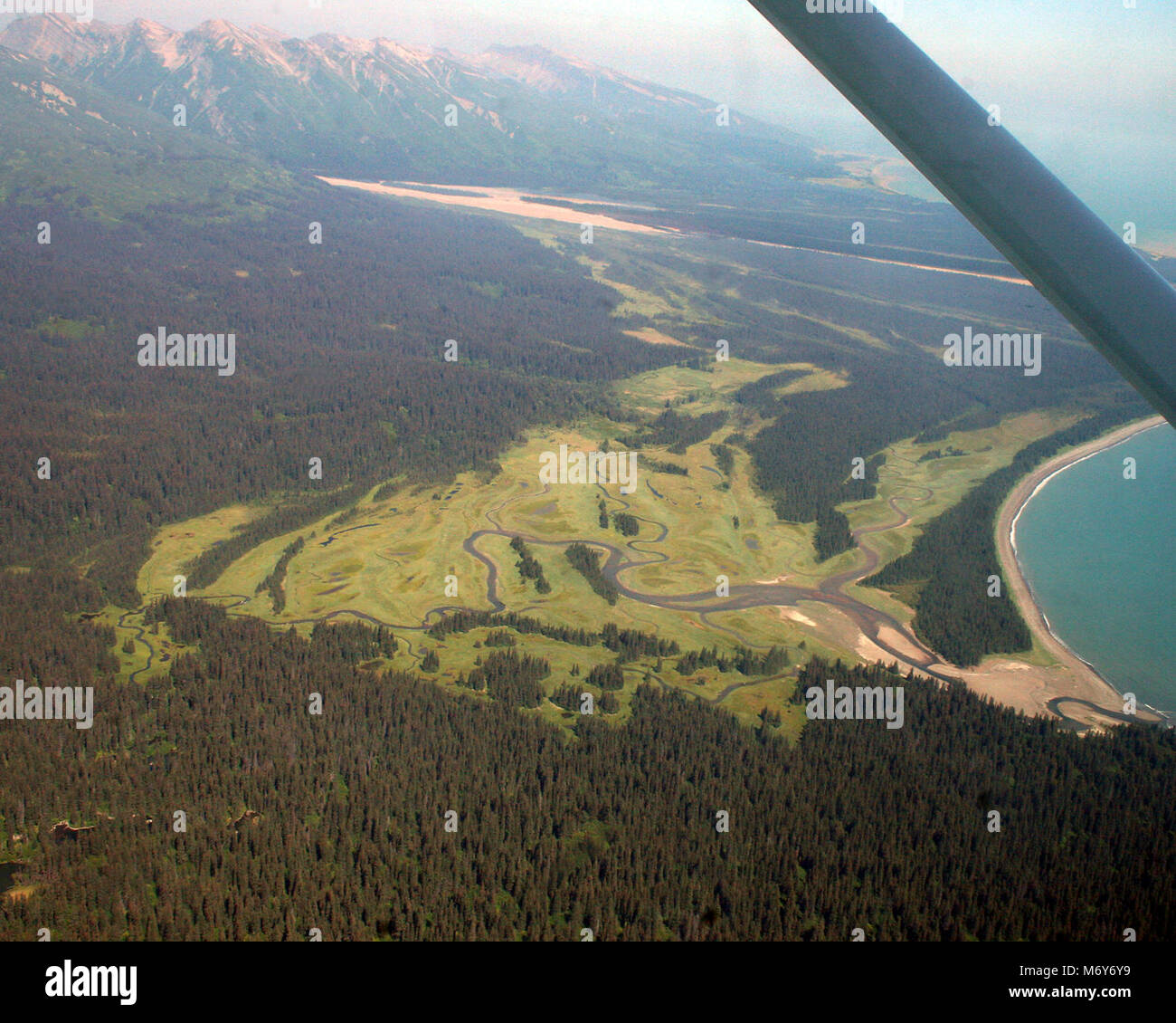 Aerial view of Chinitna Bay's Salt Marshes   . Visitors flying to Chinitna Bay can see the salt marshes bears - Stock Image