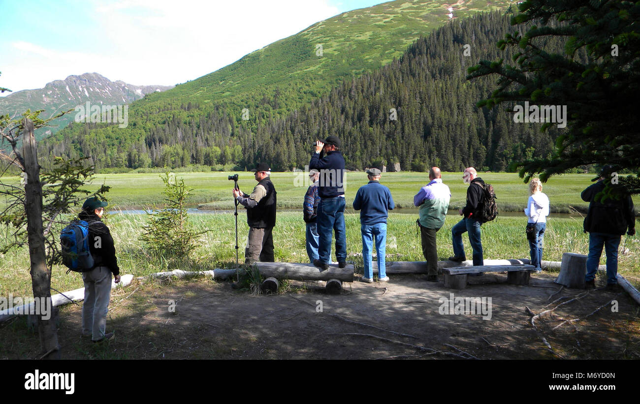 Visitors Enjoying the Eastern Bear Viewing Area   . Chinitna Bay is a popular destination.Expect to share the bear Stock Photo