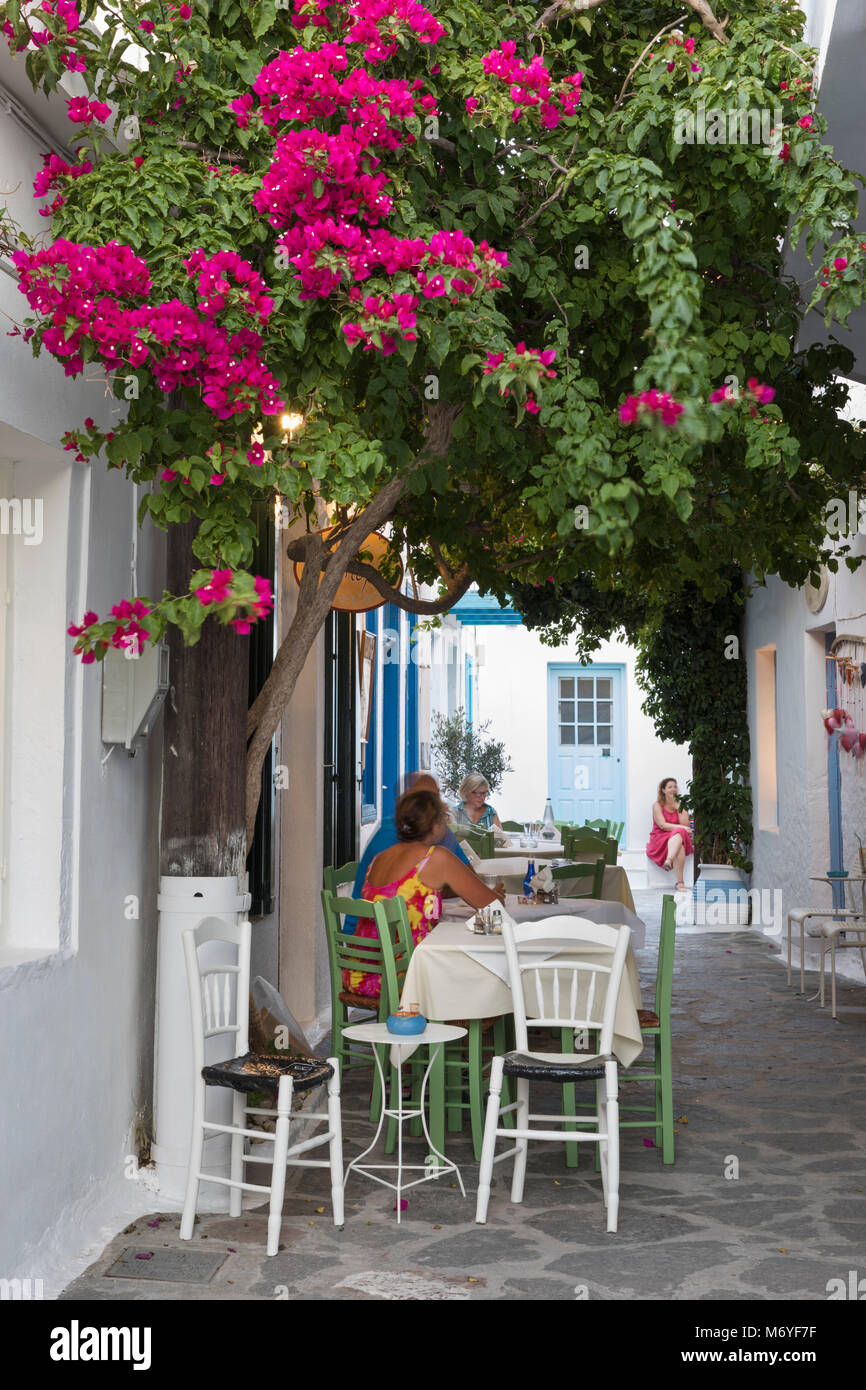 Outdoor restaurant framed by colourful bougainvillea in the old town, Plaka, Milos, Cyclades, Aegean Sea, Greek - Stock Image