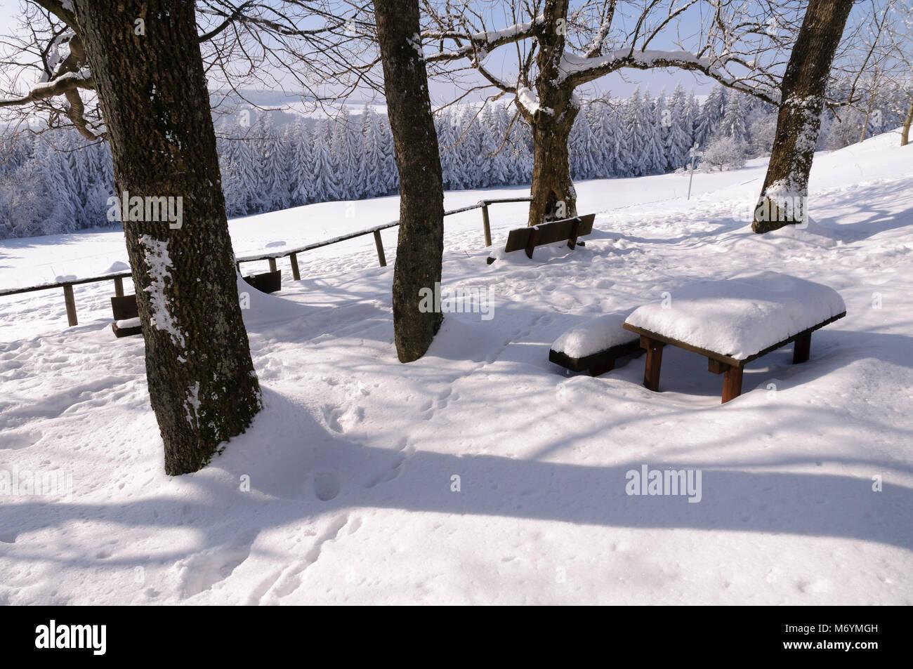 Hessische Rhön, verschneite Bäume, Hessen, Deutschland, Europa Stock Photo