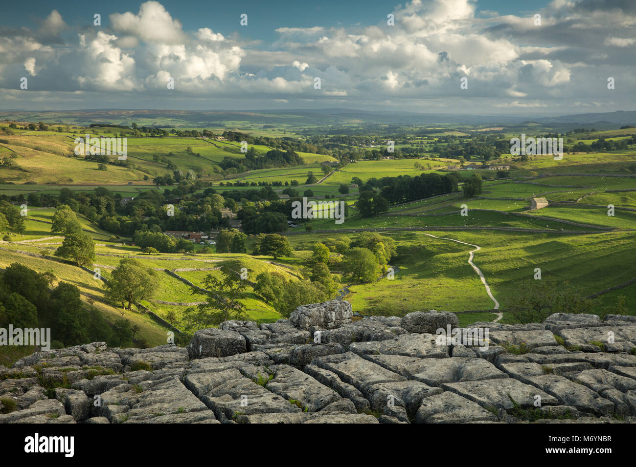 The limestone pavement at Malham Cove, Yorkshire Dales National Park, England, UK - Stock Image