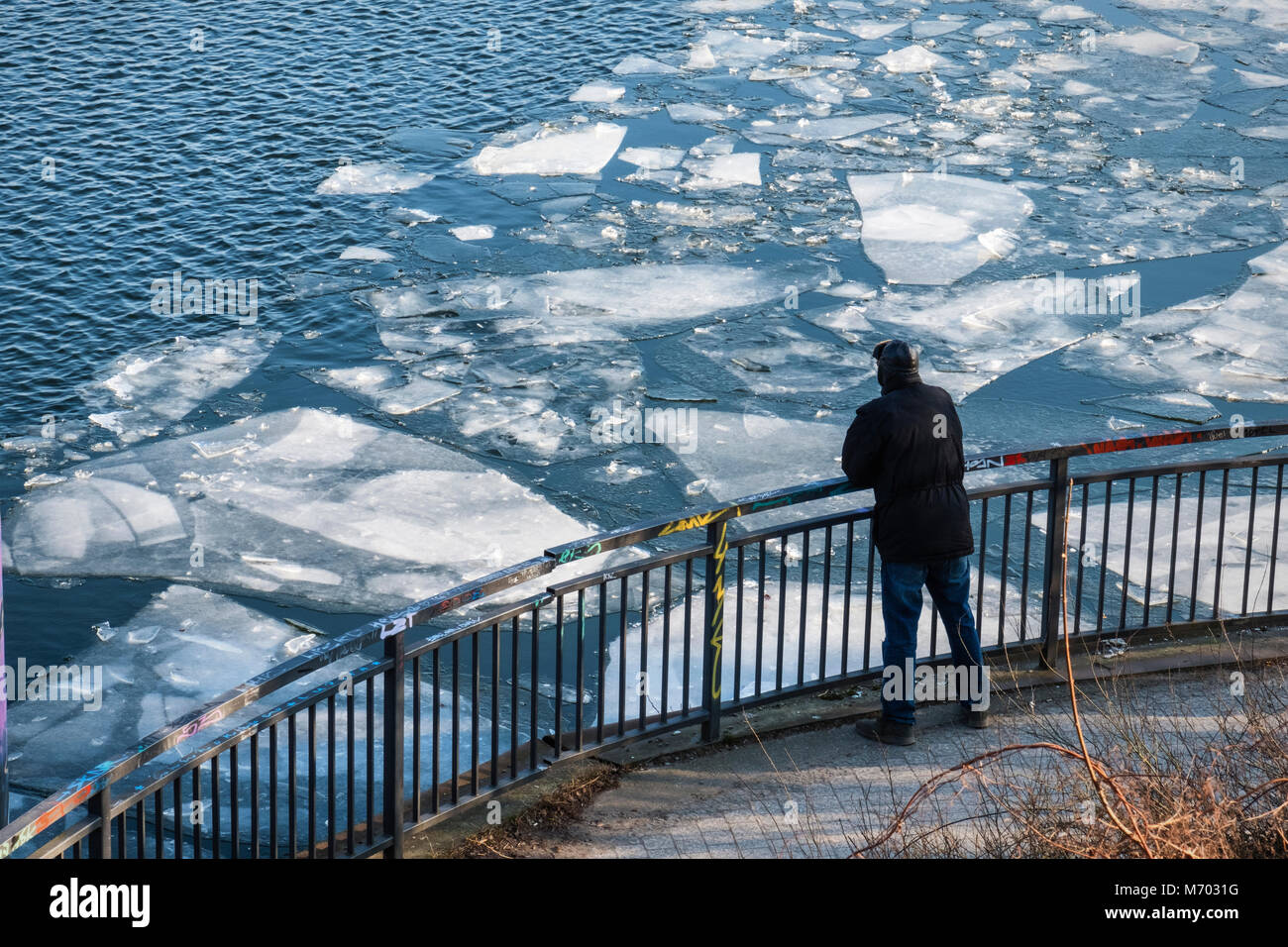 Germany ,Berlin, Man looks at ice on frozen river Spree.The  river Spree freezes as sub zero temperatures cause - Stock Image
