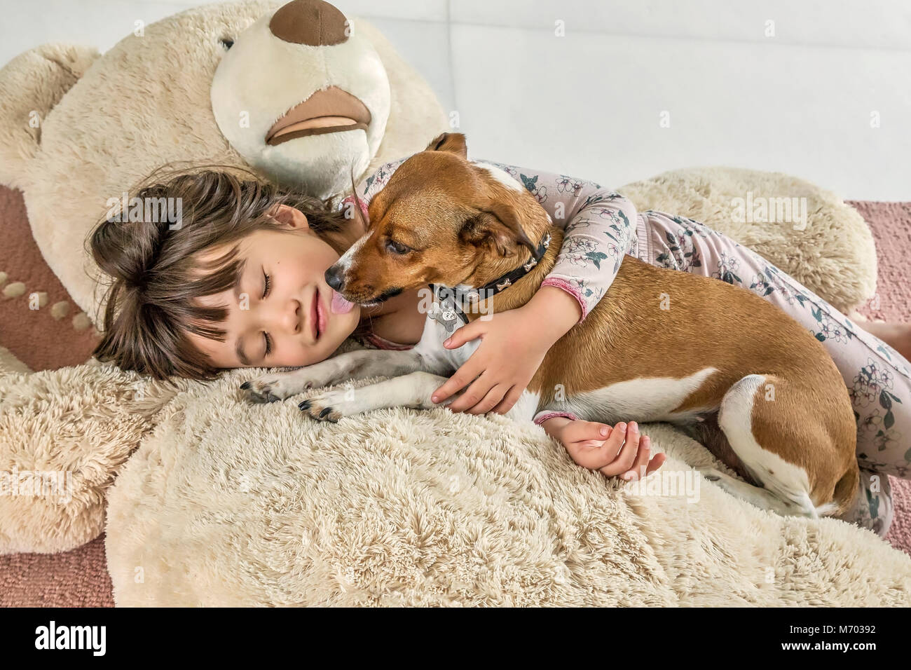Six year old girl being kissed by her dog on a giant bear Stock Photo