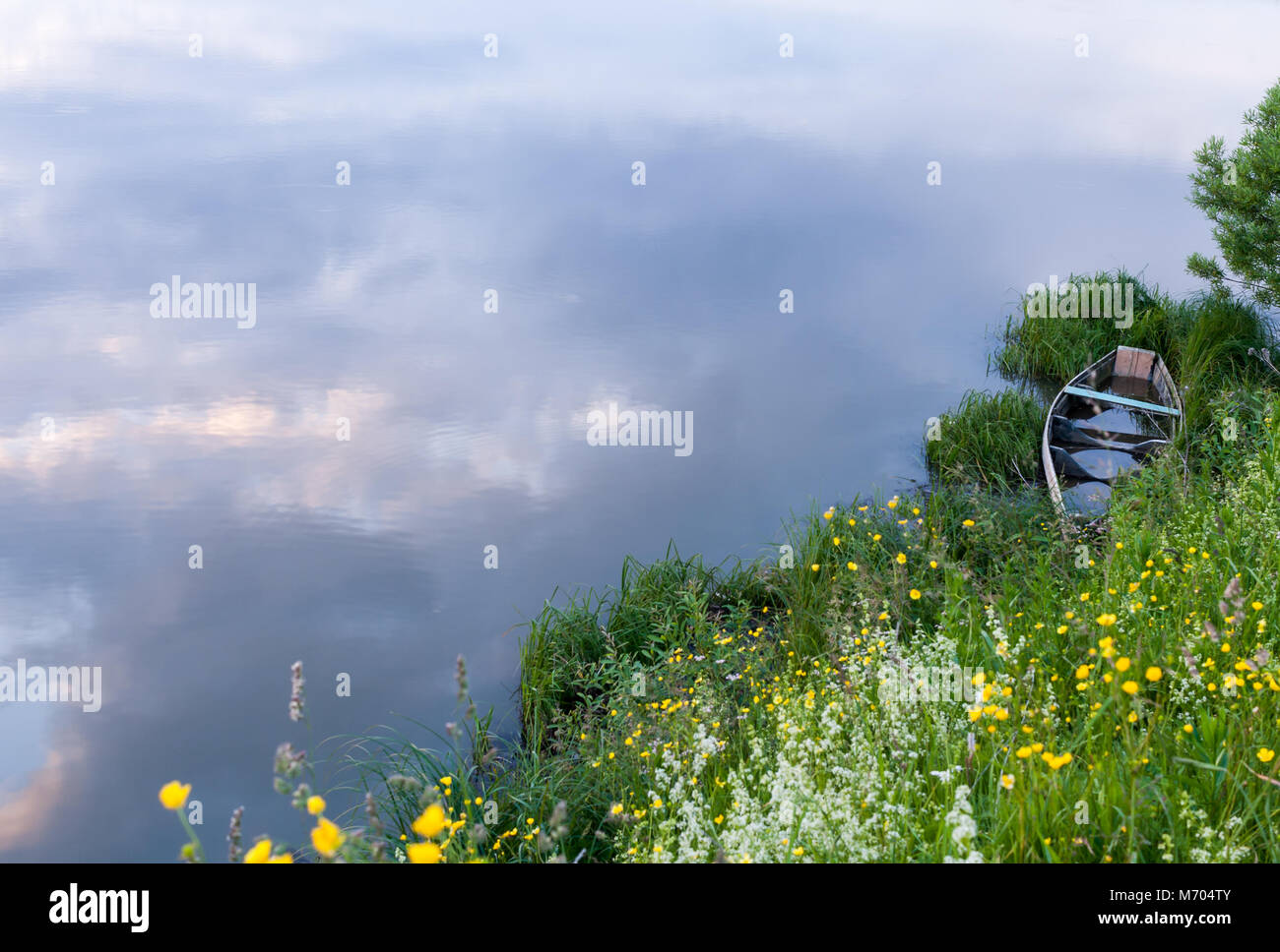 Abandoned flooded boat in the grass on the river shore. - Stock Image