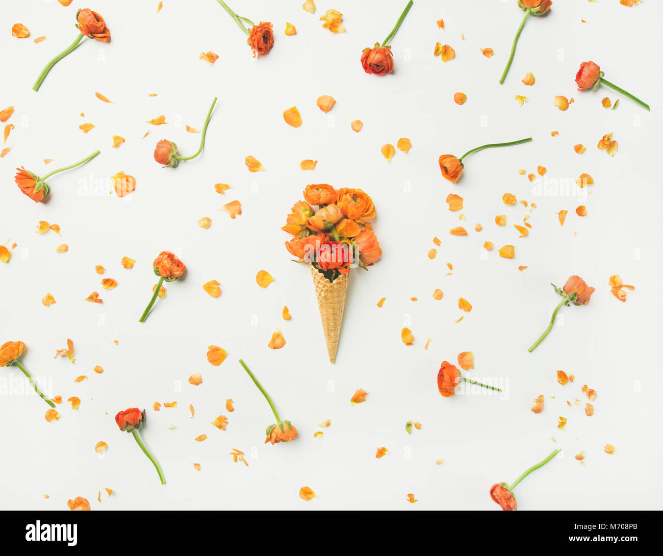 Waffle cone with orange buttercup flowers - Stock Image