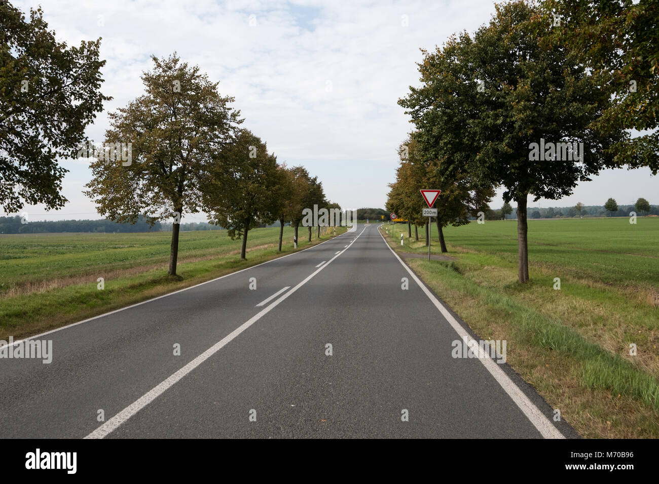 German country road in autumn near Leipzig with fields to its sides and a junction approaching, hence the give way - Stock Image