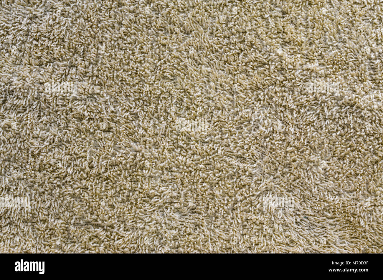 Texture of a brown carpet with long pile. Blank background - Stock Image