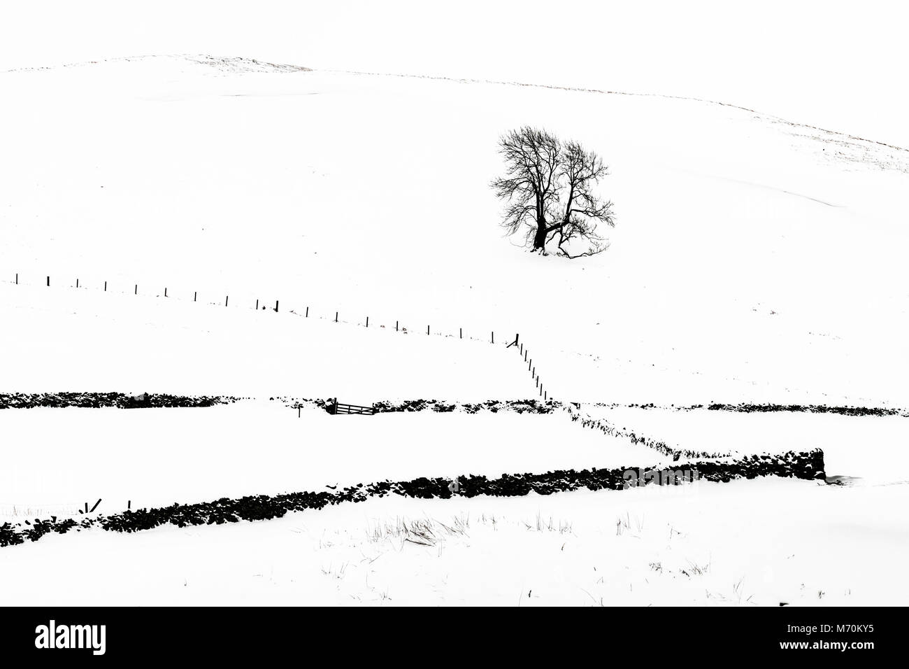 Hownam, Jedburgh, Scottish Borders, UK. 3rd March 2018. Snow on Mainside Farm near Hownam in the Cheviot Hills. - Stock Image