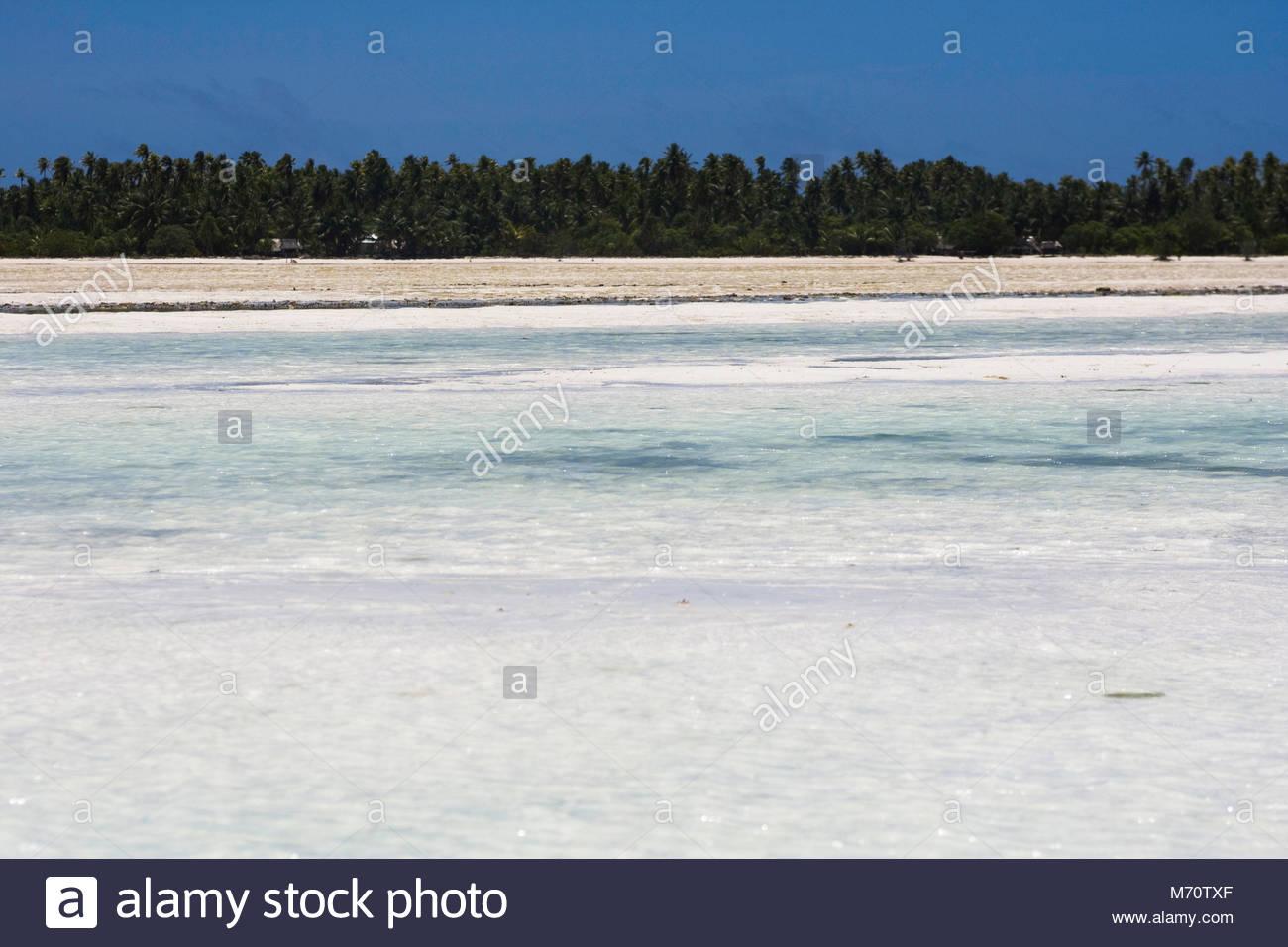 Tarawa beach from the lagoon - Stock Image