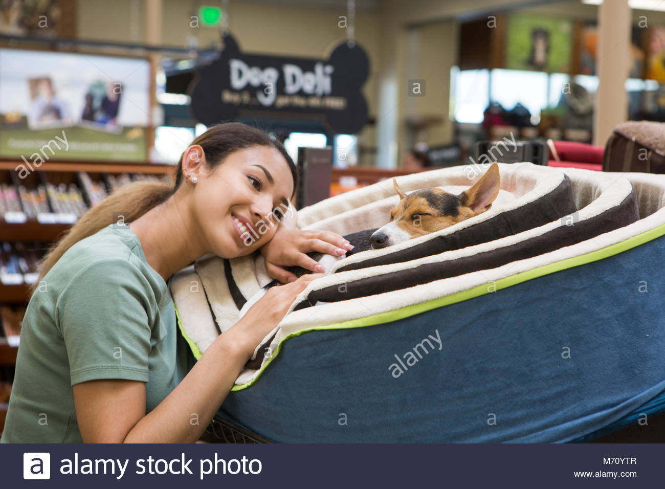 Young Asian woman resting head on dog bed next to a sleeping terrier dog in a pet store - Stock Image