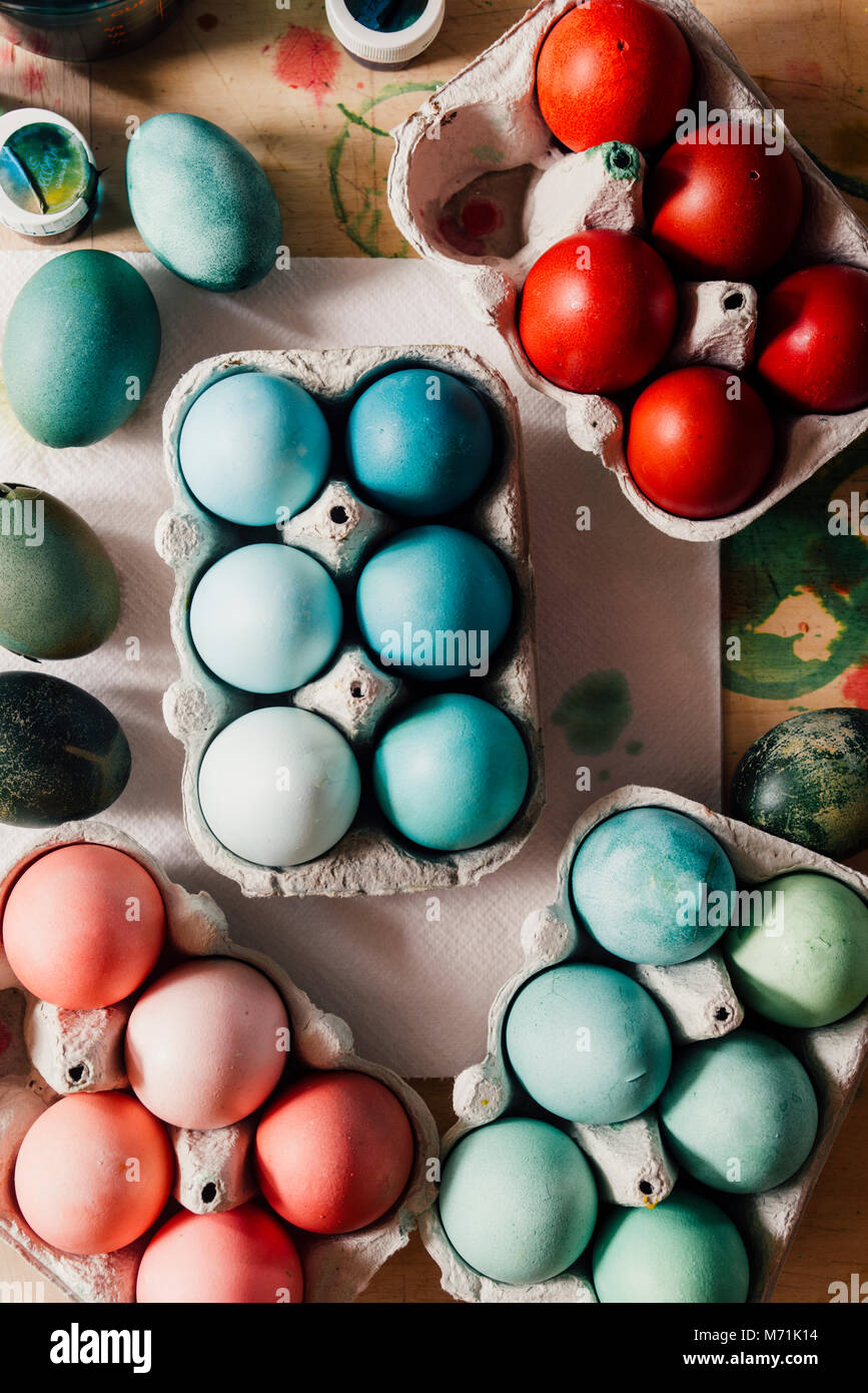 Dyeing eggs for Easter holidays, colored eggs with blue tint and different tonality ainside a package over a gray Stock Photo