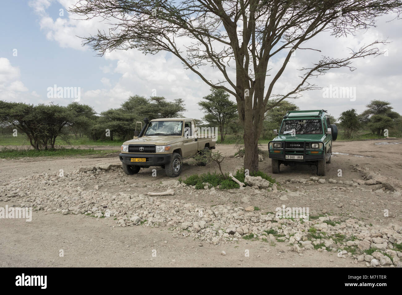 Airport parking stock photos airport parking stock images alamy airport parking with elephant bones sasakawa airstrip serengeti tanzania stock image kristyandbryce Image collections