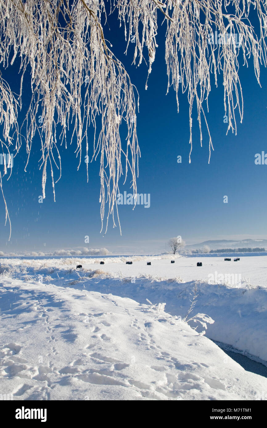 Snow covering farmland in the west Lancashire village of Rufford, Christmas Eve, 2010 - Stock Image