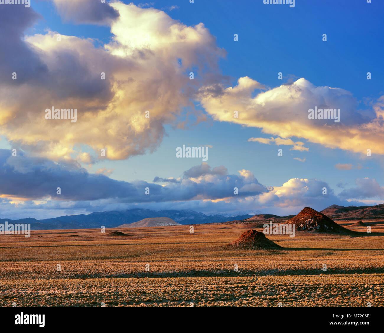 Sunset, Monitor Valley, Toquima Range, Toiyabe National Forest, Nevada - Stock Image