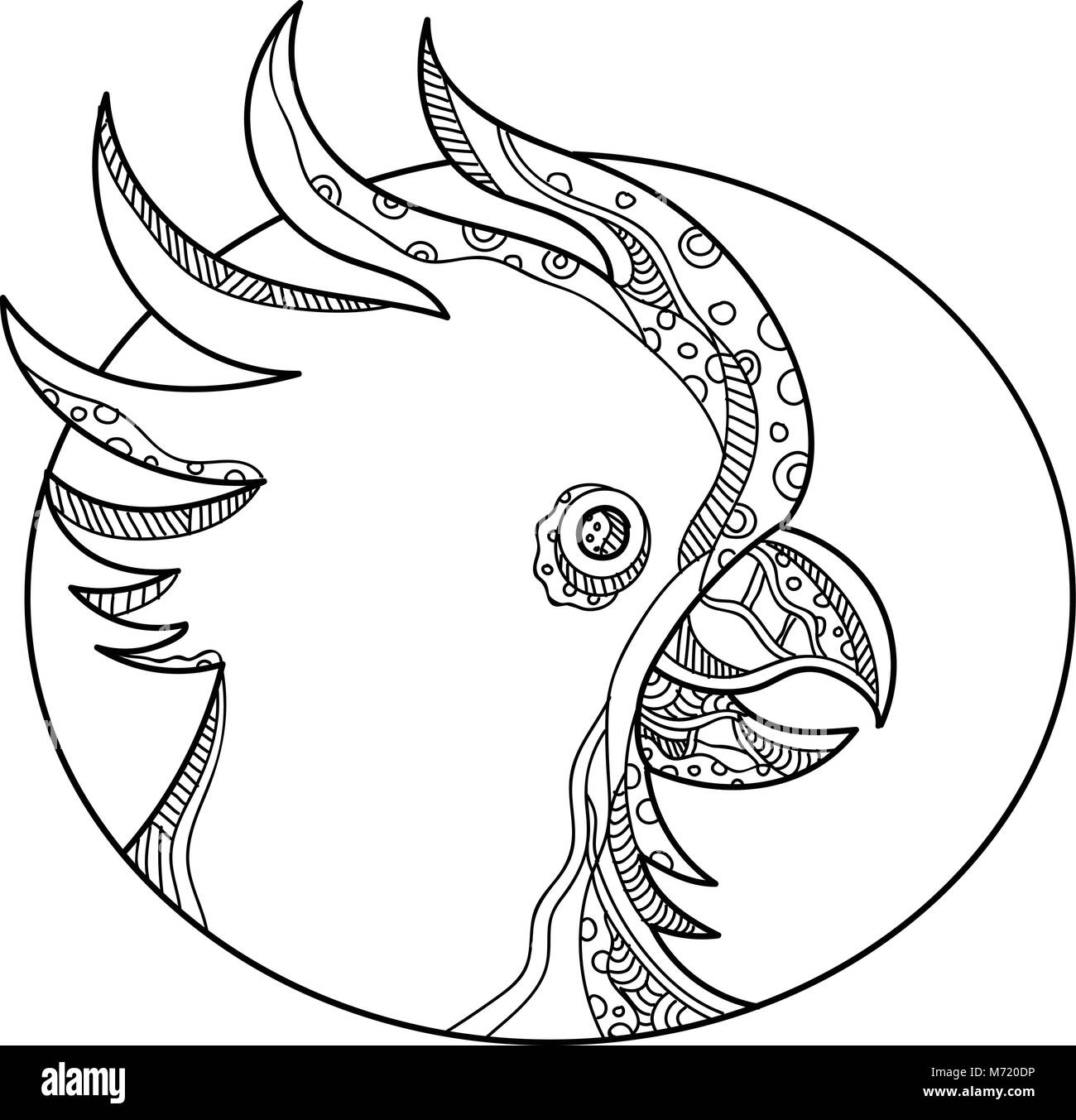 Doodle art illustration of head of cockatoo, a parrot that belongs to the bird family Cacatuidae, in black and white - Stock Vector