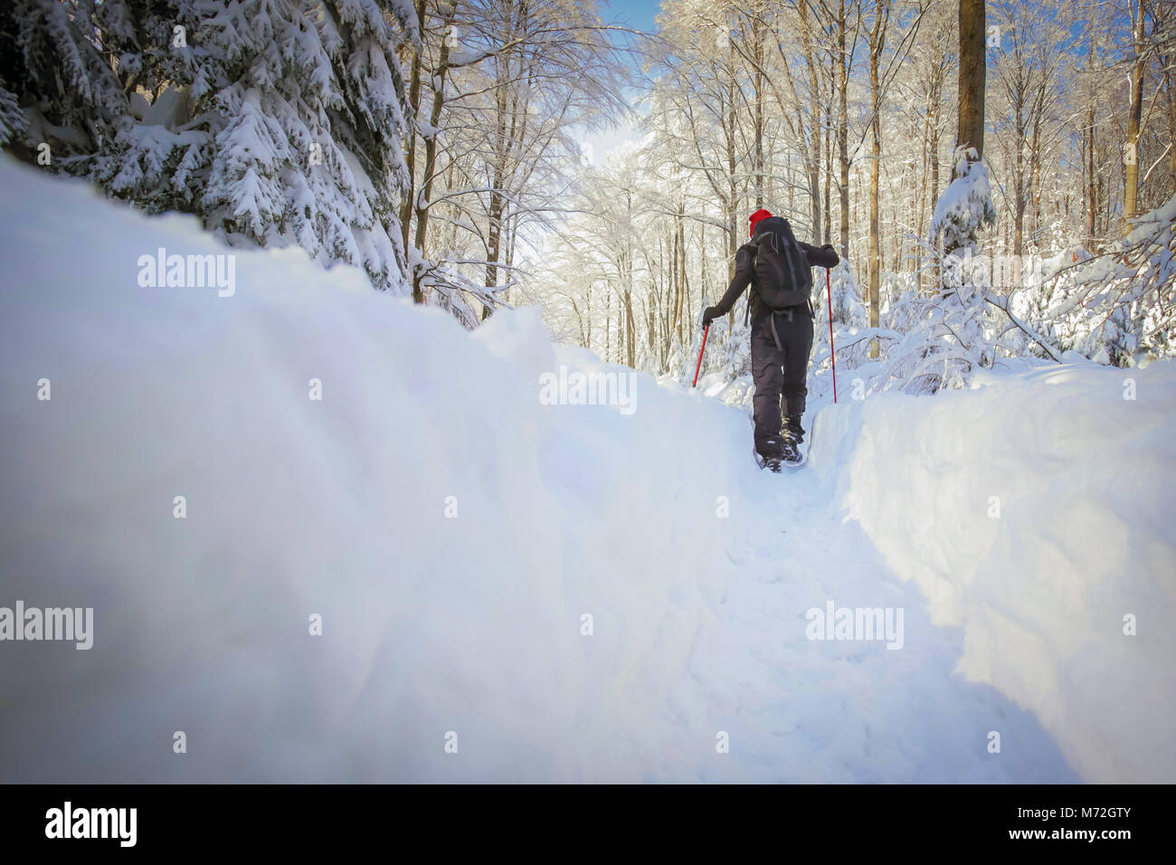 Low angle view of hiker walking on the path with fresh deep snow in the forest on the hill. Stock Photo