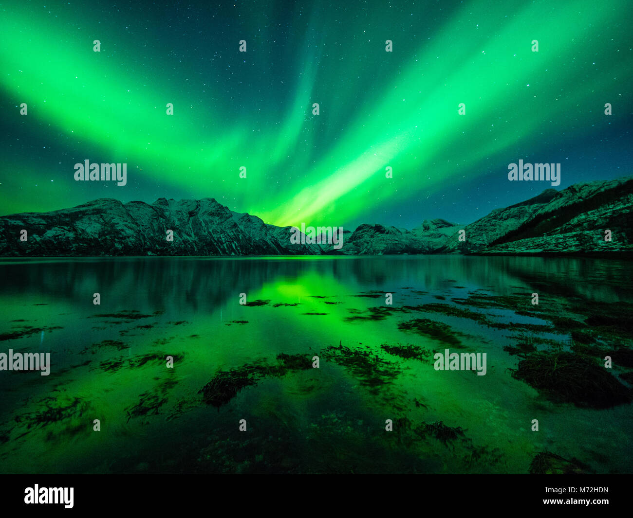 Green lady dances over northern Norway - Stock Image