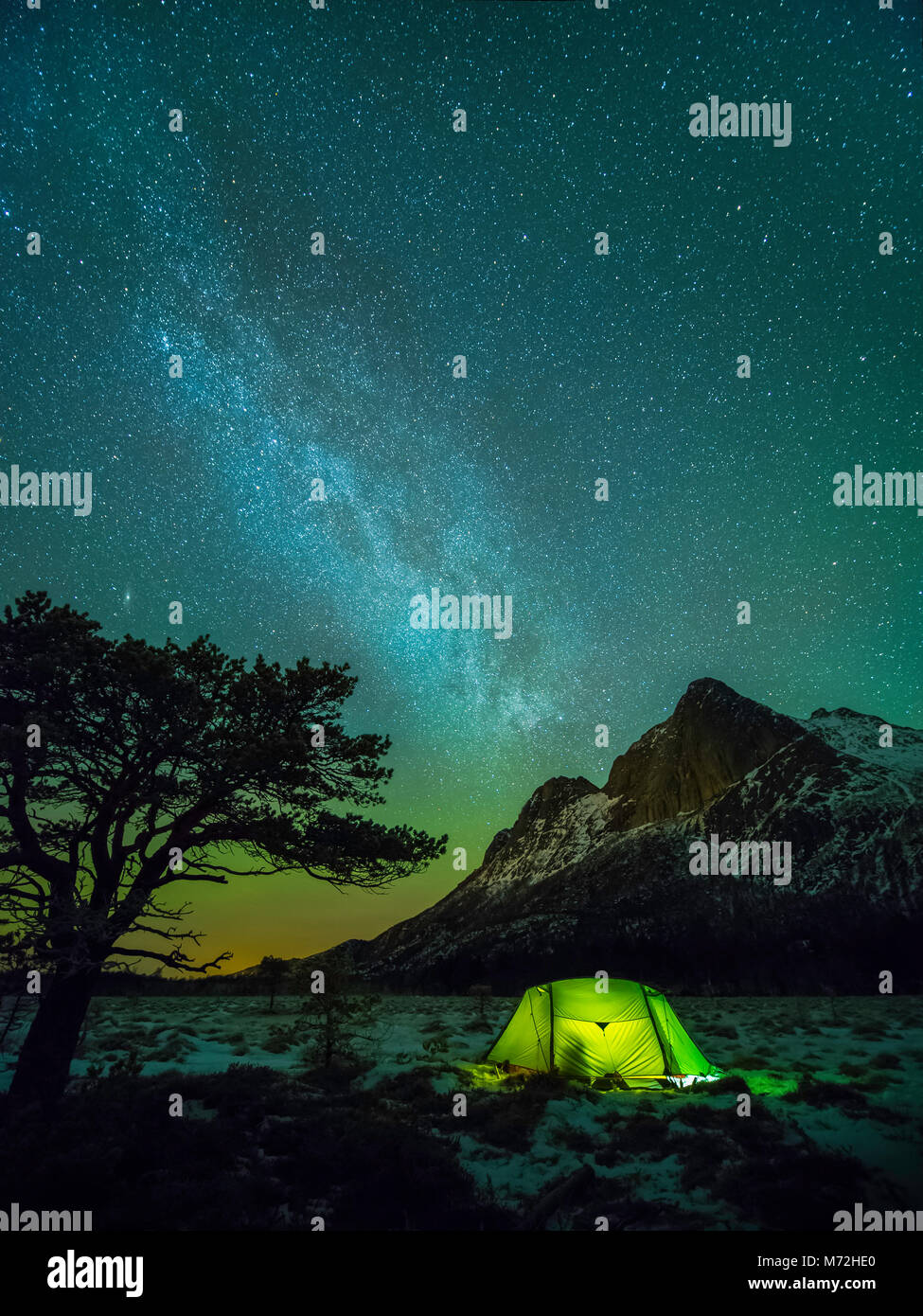 Camping under the Milky way. A pine tree, a tent and the mountain of 'Strandåtinden' during night time - Stock Image