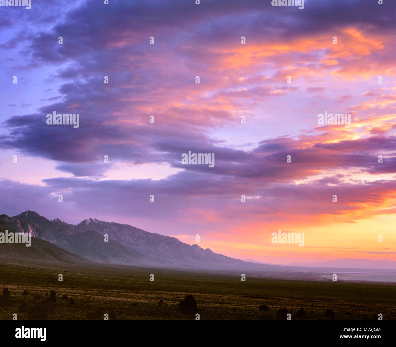 Dawn, Toiyabe Range, Toiyabe National Forest, Nevada - Stock Image