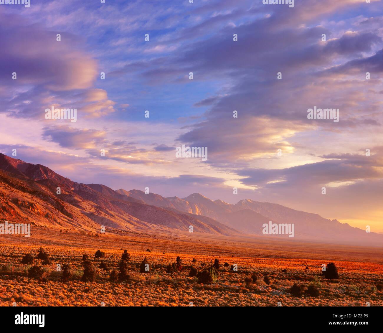 Sunrise, Toyiabe Range, Toyiabe National Forest, Nevada - Stock Image