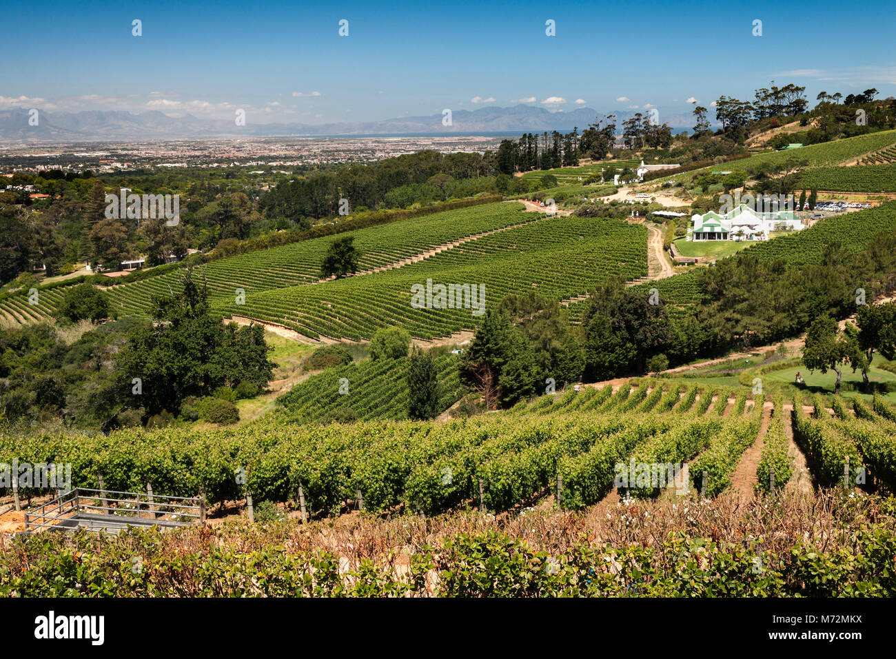 View across the Constantia valley from the Beau Constantia wine estate in Cape Town. - Stock Image