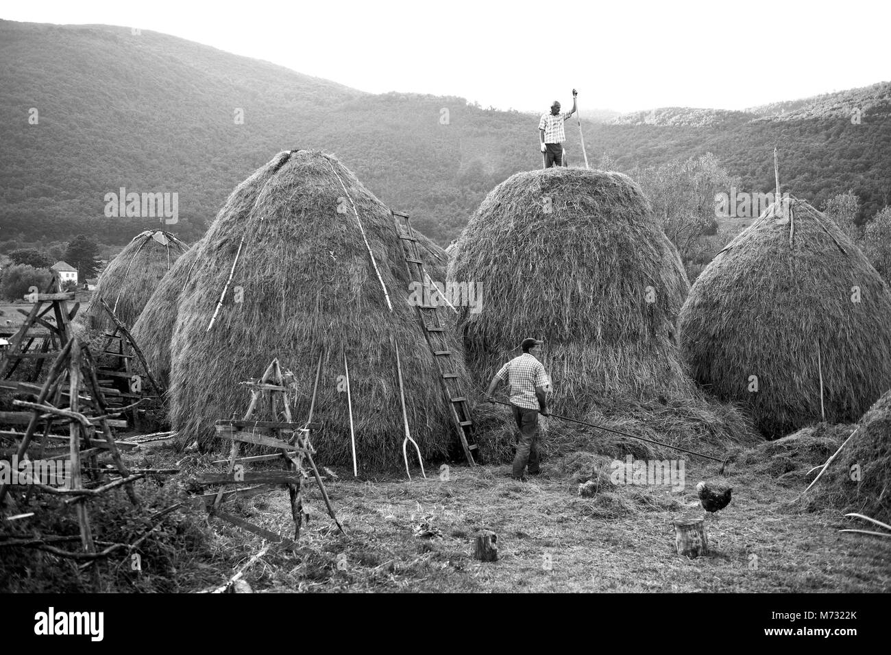 Traditional black and white image of haystack building in the Balkan - Stock Image