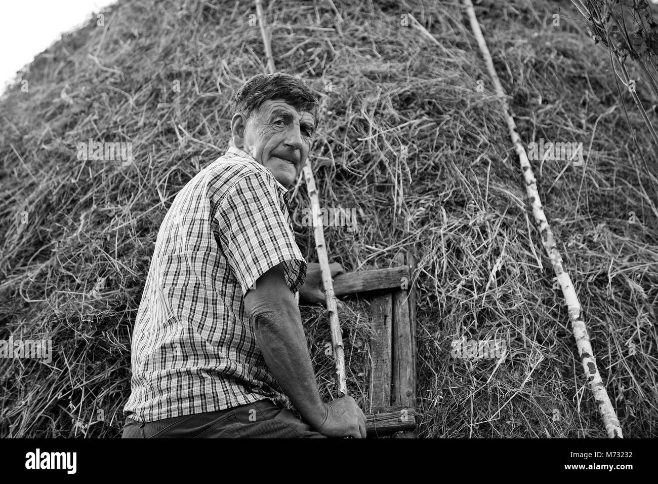 Black and white of farmer on ladder against haystack looking at the camera - Stock Image