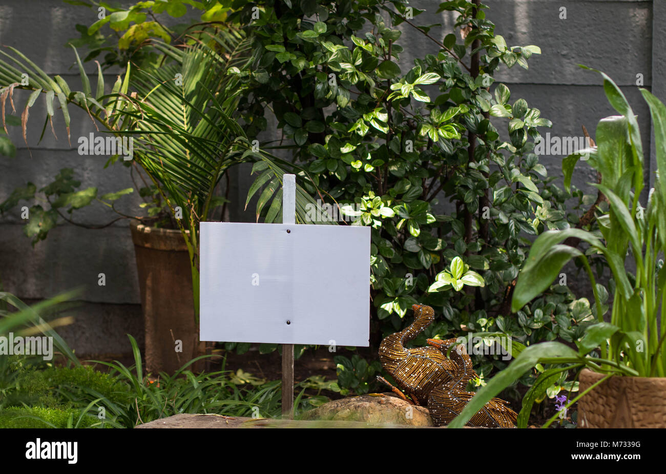 Blank white signboard to insert an own individual message on in a garden setting image in landscape format with - Stock Image